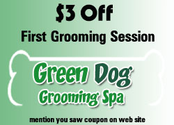 dog grooming shop coupon